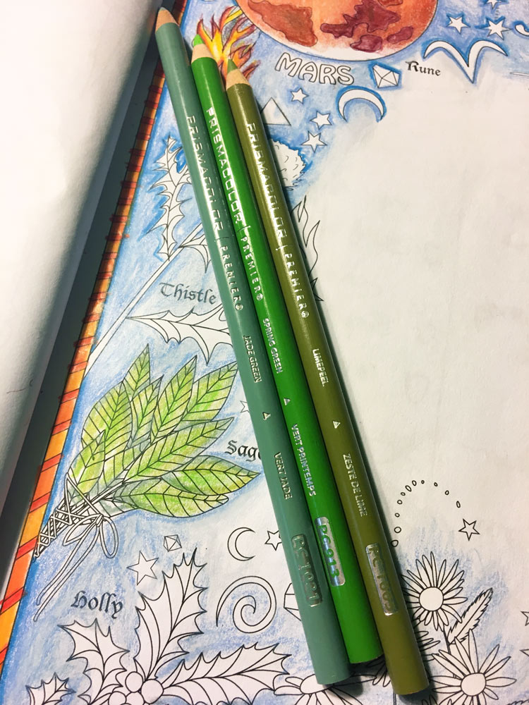Sage Herb Coloring Tutorial