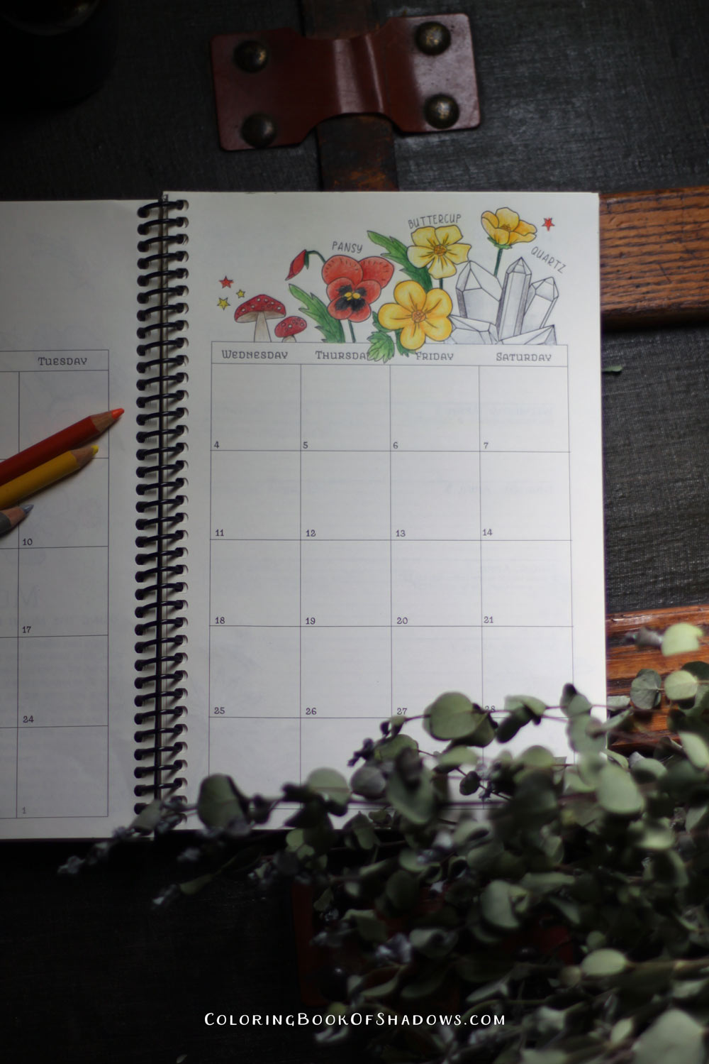 Quartz, floral correspondences and more magical coloring inspiration.